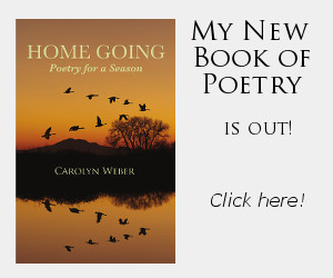New Poetry book is live